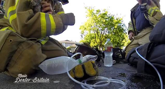 Fireman Saves Kitten - Dexter Britain