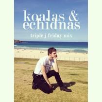 Ryan Hemsworth | Koalas & Echidnas (Triple J Friday Mix)