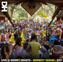 Live @ Desert Hearts - Monkey Safari - 032